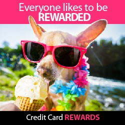 Everyone Likes to be Rewarded - Credit Card Rewards