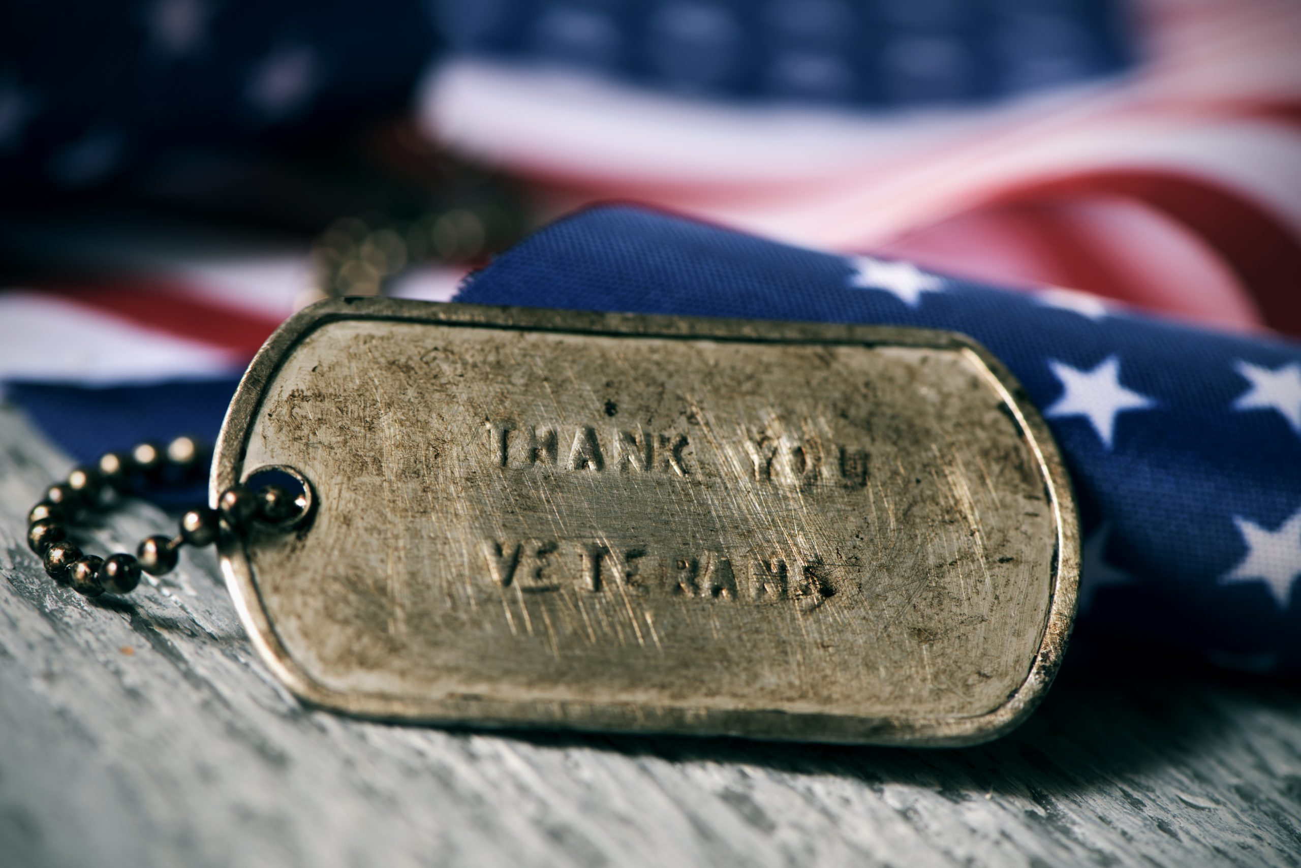 Thank You Veterans in a dog tag - flat in background
